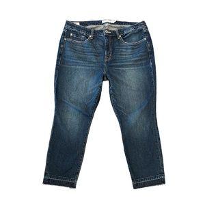 Torrid Trendy High Rise Straight Leg Jeans